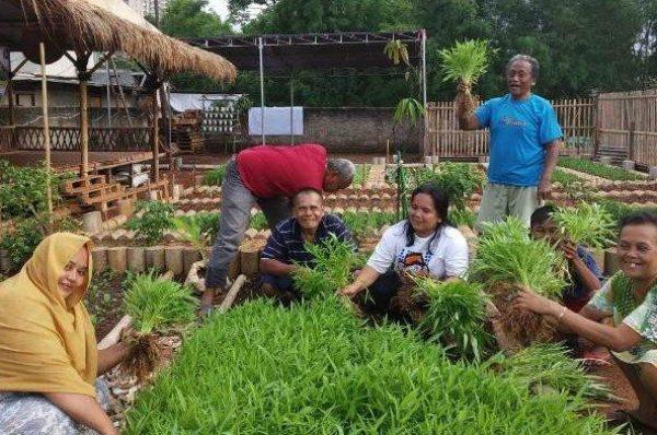 အေရွ႕ေတာင္အာရွမွာ ေခတ္စားလာတဲ႔ ျမိဳ႕ျပစိုက္ခင္းစနစ္ (Urban Farming)