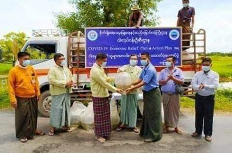 ရေကြည်မြို့နယ်က ငါးမွေးတောင်သူတွေကို ငါးသားပေါက်တွေ အခမဲ့ထောက်ပံ့