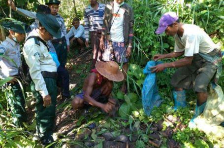 မြန်အောင်သစ်တောကြိုးဝိုင်းအတွင်း ပိုင်ရှင်မဲ့ ဆင်သားရေအခြောက်များတွေ့ရှိ