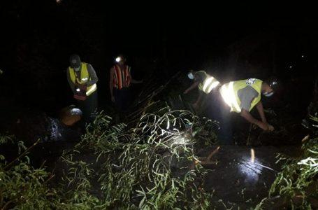 မြန်အောင်မြို့မှာ လေပြင်းတိုက်ပြီး သစ်ပင်လဲကျလို့ လူတစ်ဦးသေဆုံး